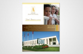 Adler Graduate School - Brochure