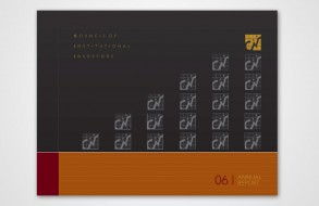 Ctvrtnik Design - CII Annual Report Cover